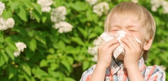 Las alergias primaverales afectan a millones de personas, incluyendo a una gran proporción de niños.