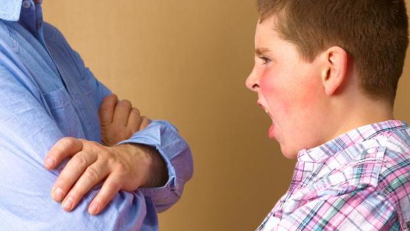 Cómo ayudar a los niños a manejar la emoción del enojo? - Pekelandia